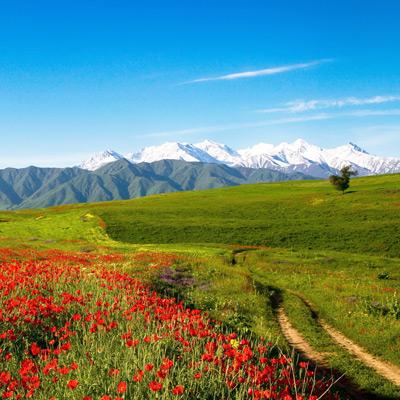 Въезд в Киргизию: нужна ли виза для поездки, правила, документы